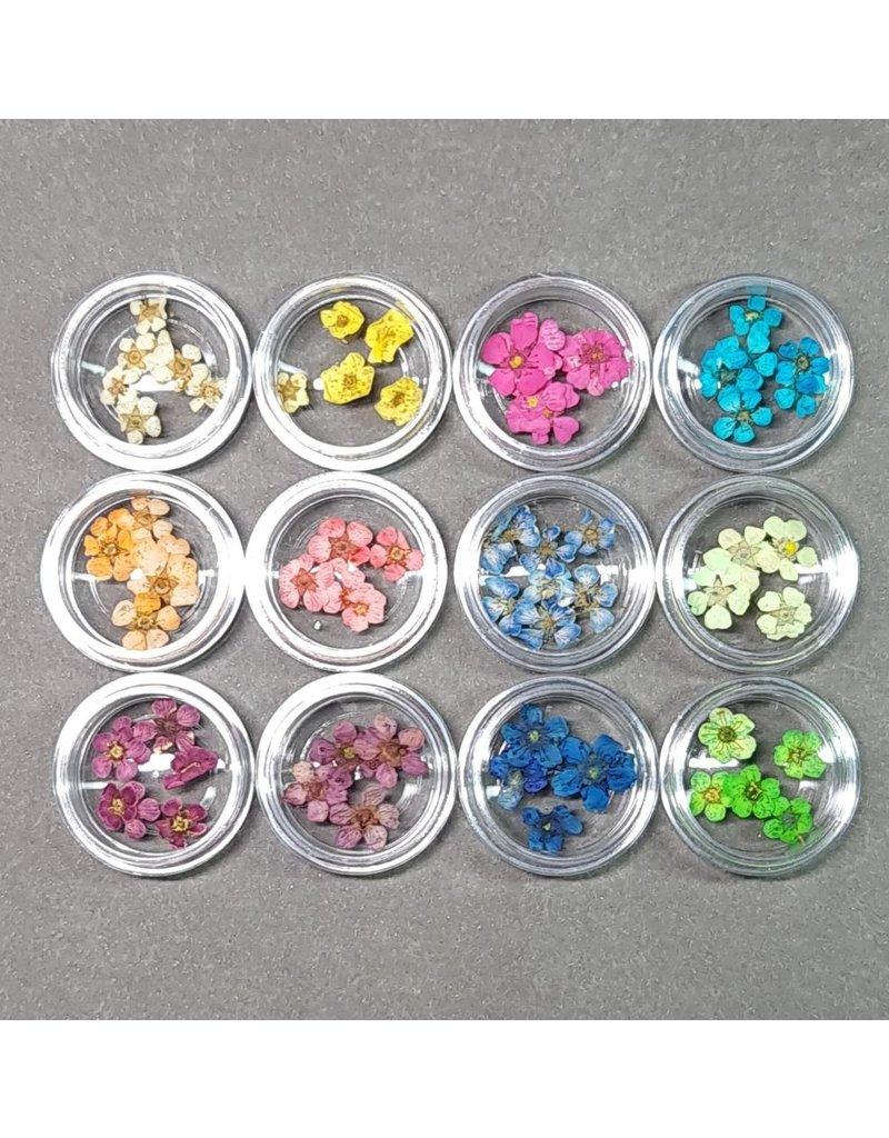 12x Nail Art Trockenblumen im Set