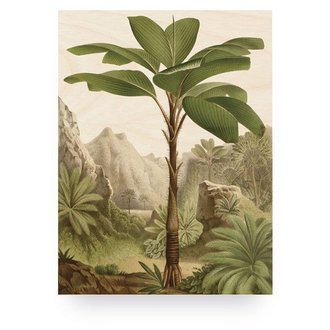 KEK Amsterdam Wood print Banana Tree M