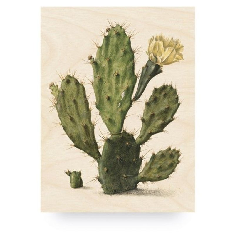 KEK Amsterdam-collectie Wood print Botanical Cactus L