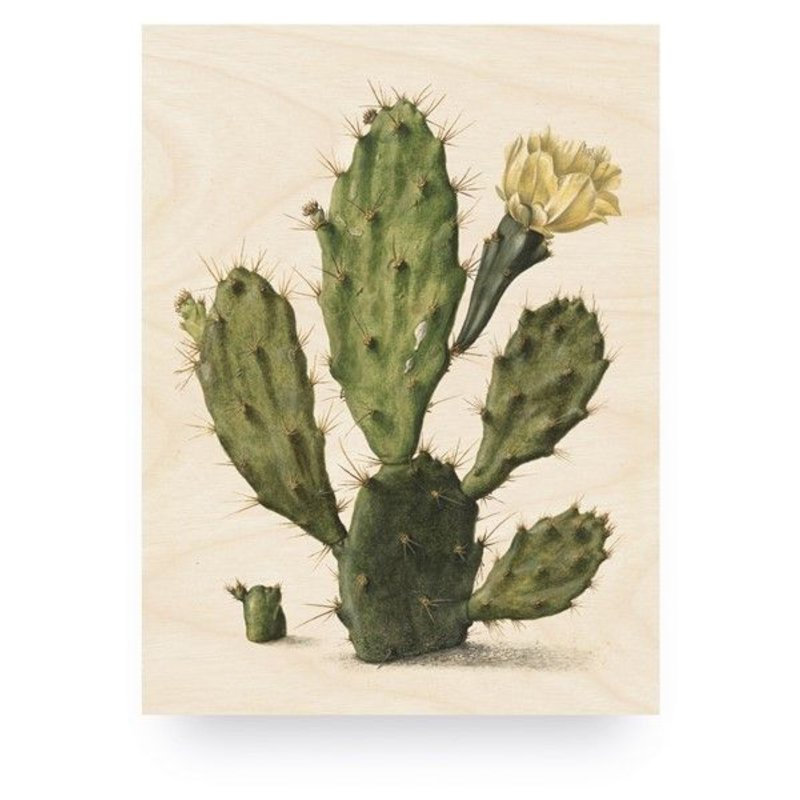 KEK Amsterdam-collectie Wood print Botanical Cactus M