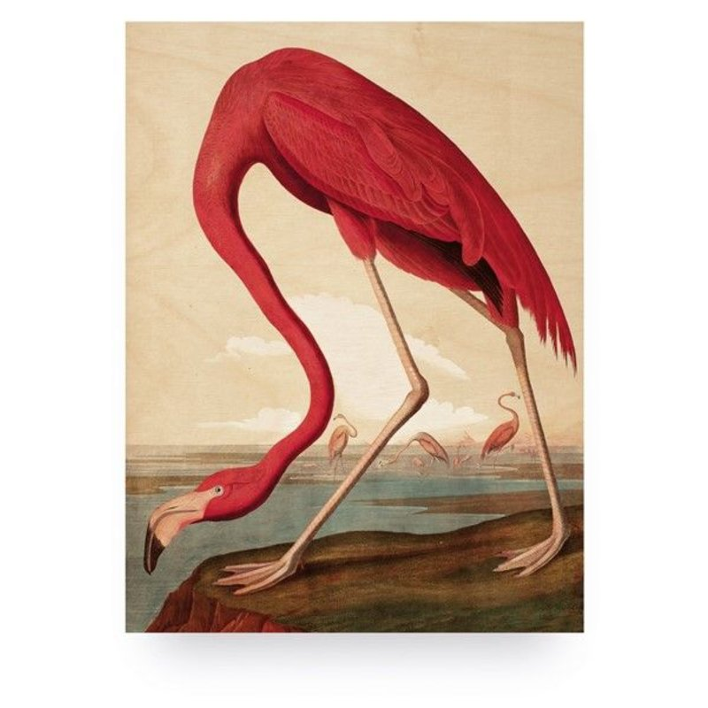 KEK Amsterdam-collectie Wood print Flamingo M