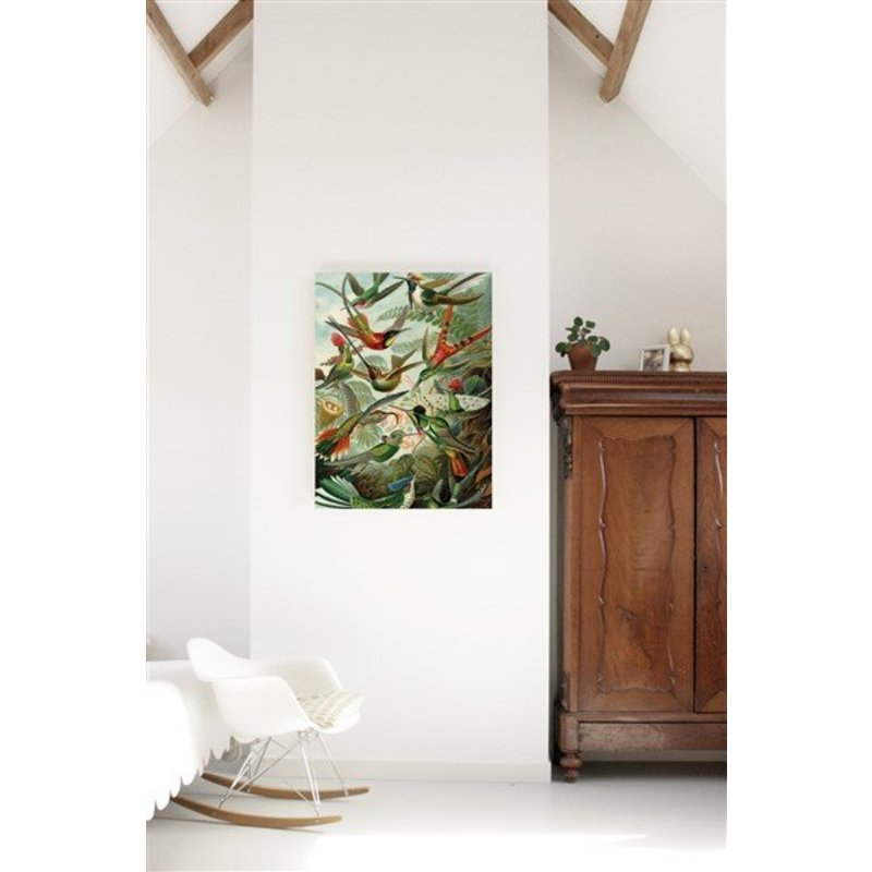 KEK Amsterdam-collectie Print op hout Exotic Birds L