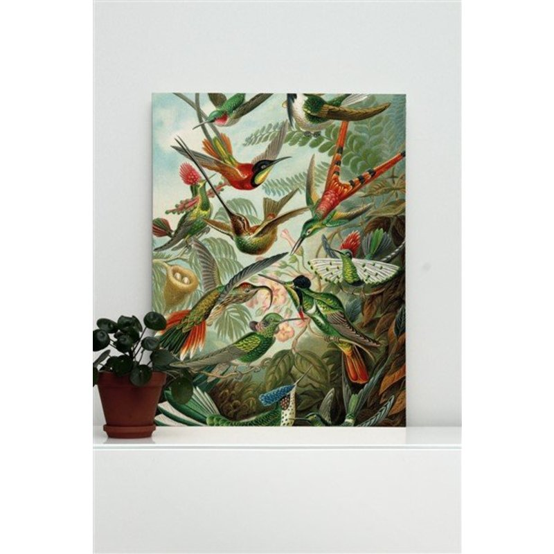 KEK Amsterdam-collectie Print op hout Exotic Birds M