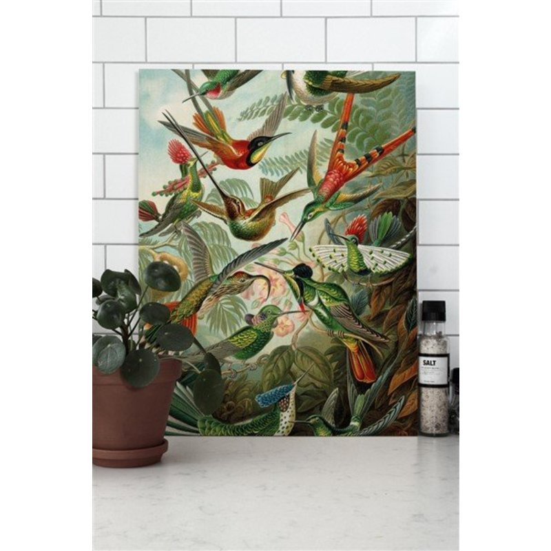KEK Amsterdam-collectie Wood print Exotic Birds S