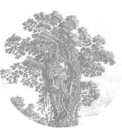 KEK Amsterdam Behangcirkel Engraved Tree