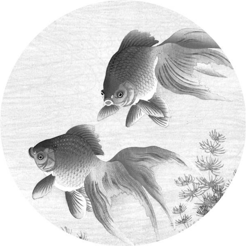 KEK Amsterdam-collectie Wallpaper Circle Goldfish