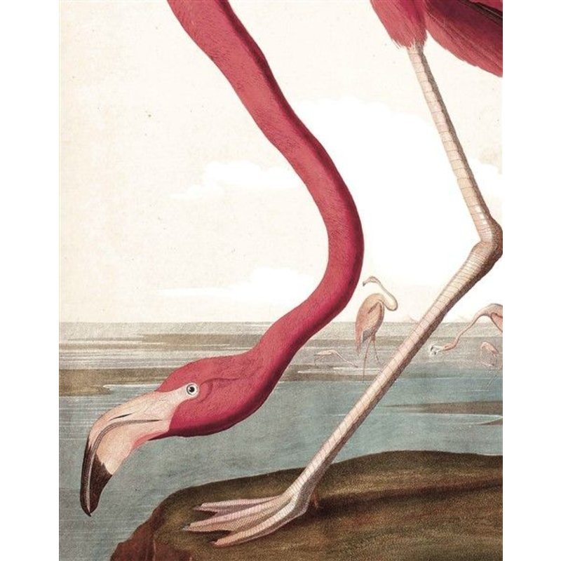 KEK Amsterdam-collectie Wallpaper Panel Flamingo