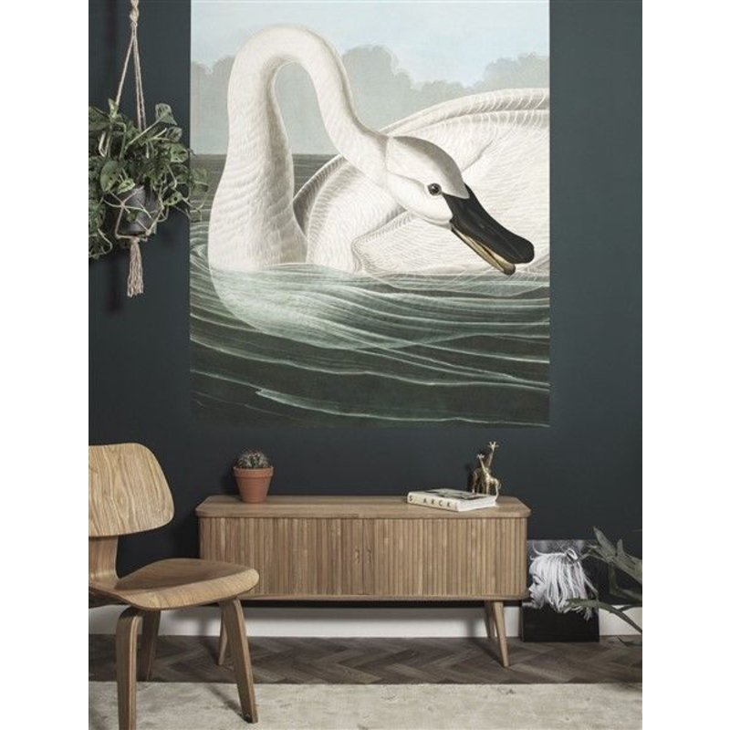 KEK Amsterdam-collectie Wallpaper Panel Trumpeter Swan