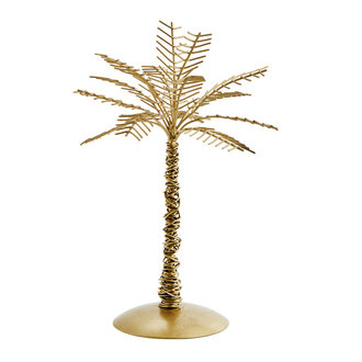 Madam Stoltz Iron palm tree