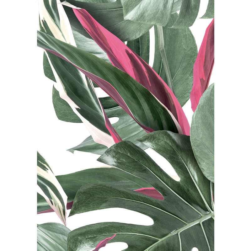 KEK Amsterdam-collectie Behang Botanical leaves, white