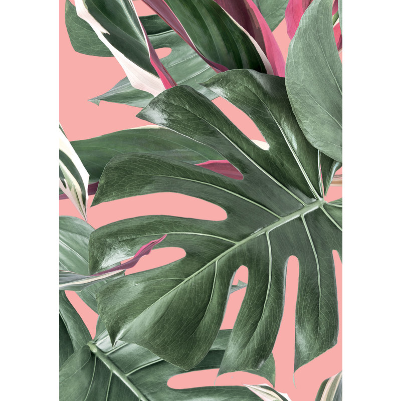 KEK Amsterdam-collectie Wallpaper Botanical leaves, pink