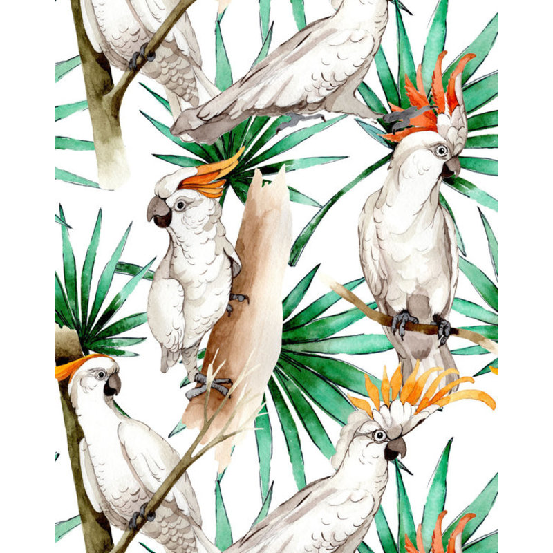 Creative Lab Amsterdam-collectie White Parrot behang op rol