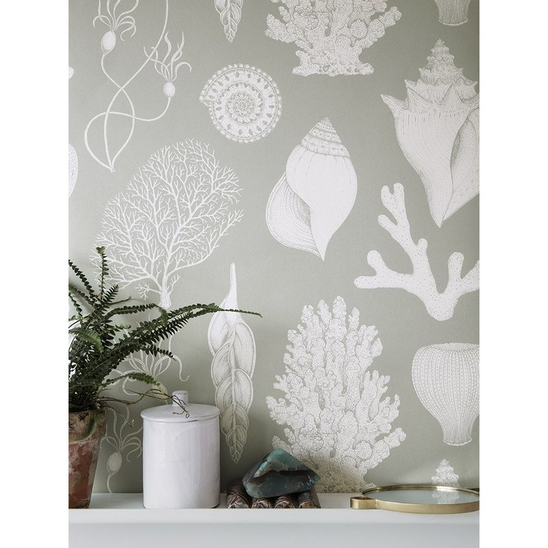 ferm LIVING-collectie Katie Scott Wallpaper - Shells - aqua