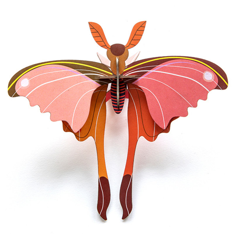 Studio ROOF-collectie Insect Pink Comet Butterfly
