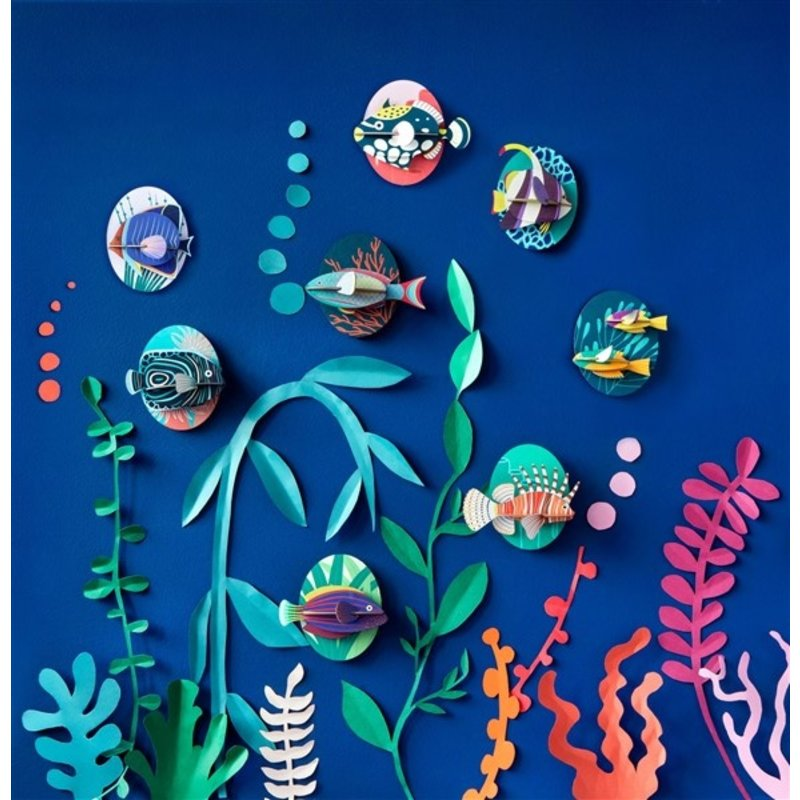 Studio ROOF-collectie Marine Angelfish
