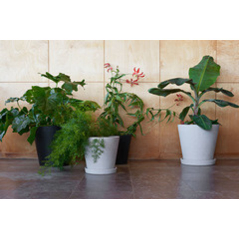 HAY-collectie Flowerpot With Saucer XXXL Zwart