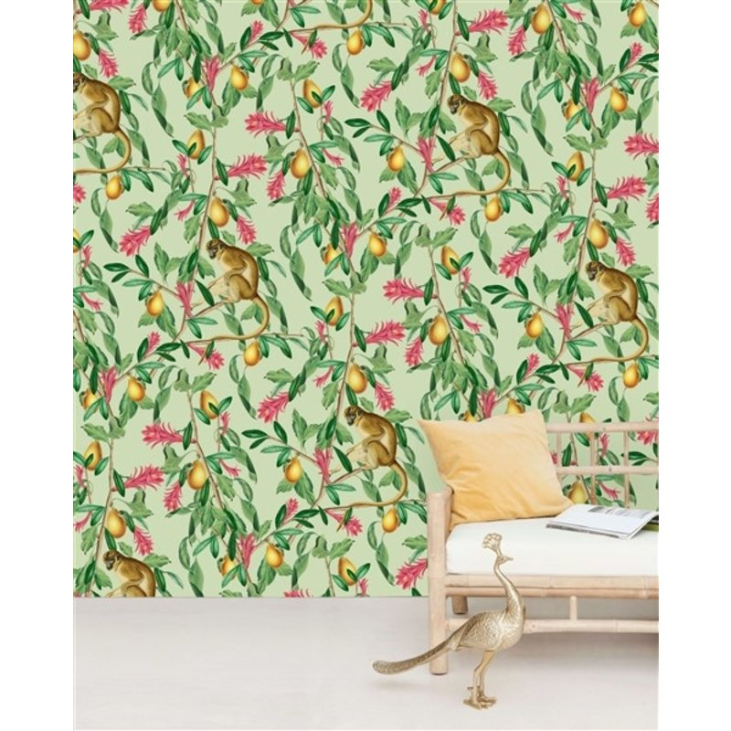 Creative Lab Amsterdam-collectie Tropical Monkey behang Mural