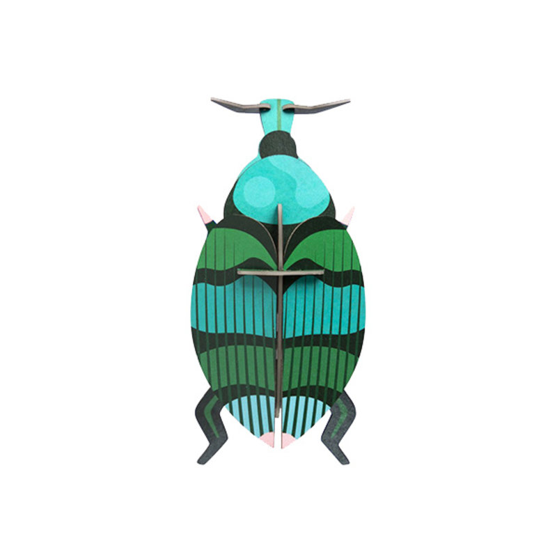 Studio ROOF-collectie Insect Weevil Beetle