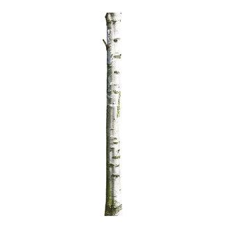 KEK Amsterdam Muursticker Home Tree 7 20x300 cm