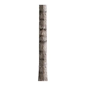 KEK Amsterdam Muursticker Home Tree 6 26x260 cm