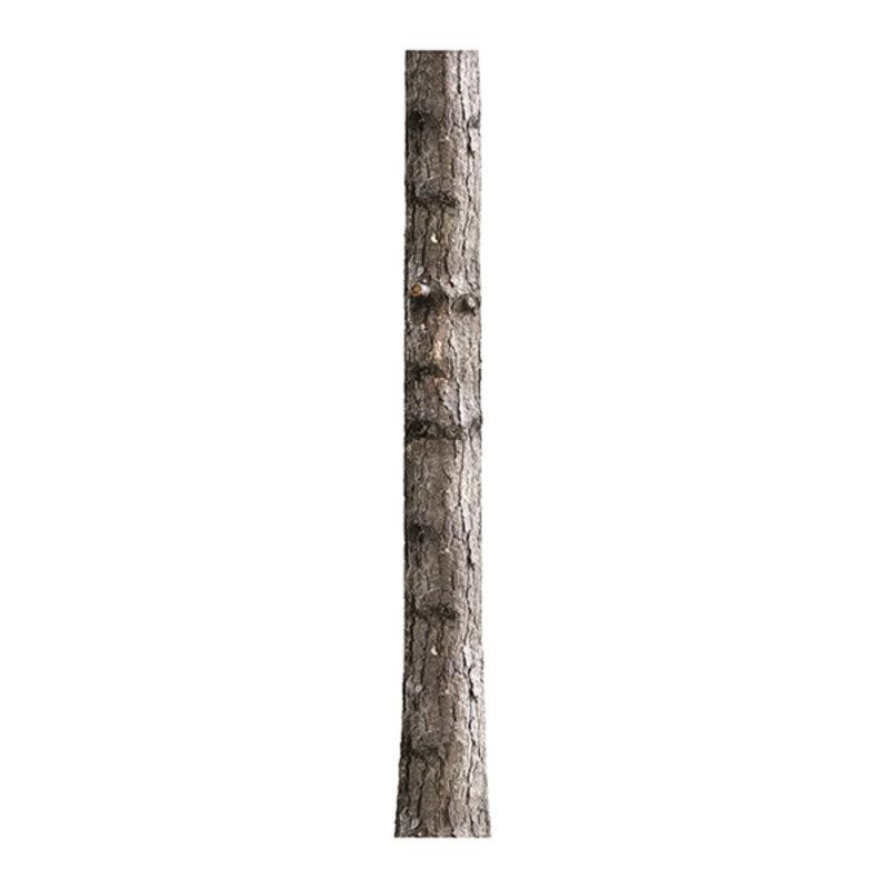 KEK Amsterdam-collectie Muursticker Home Tree 6 26x260 cm