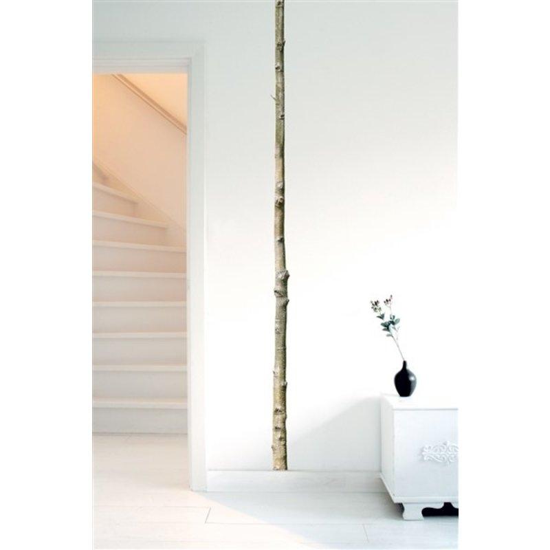 KEK Amsterdam-collectie Muursticker Home Tree 5 5x260 cm