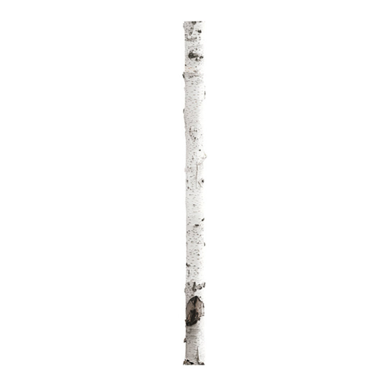KEK Amsterdam-collectie Muursticker Home Tree 3 16x260 cm