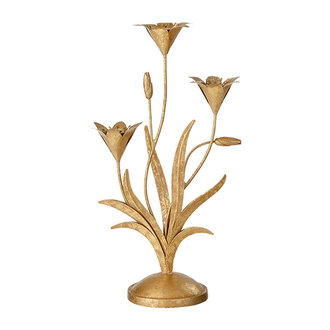Bungalow Candelabra Lily Golden