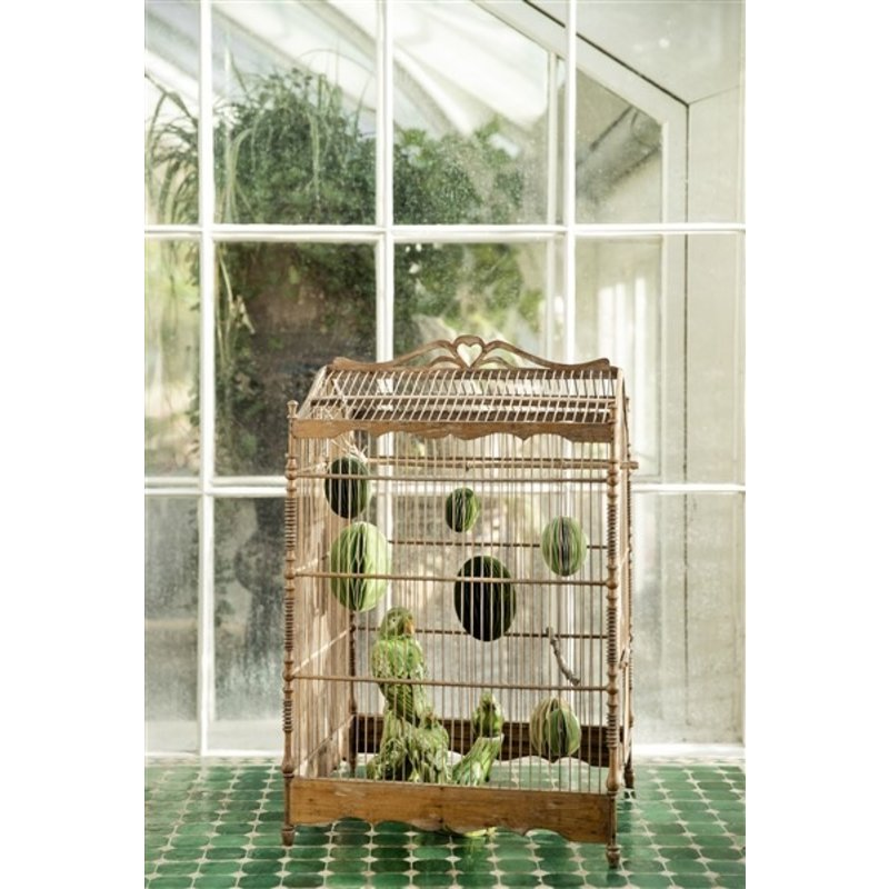 Bungalow-collectie Parrot on Branch Grass Green