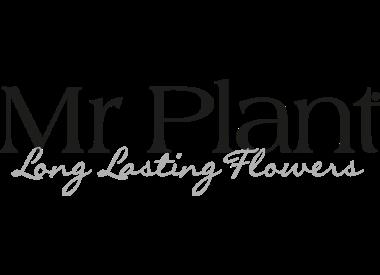 Mr Plant-collectie
