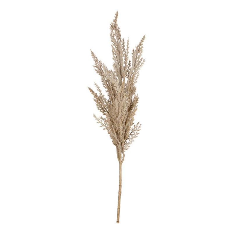 Mr Plant-collectie Artificial Pampas grass twig plume natural 80 cm