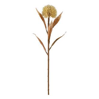 Mr Plant Kunstbloem Distel beige 70 cm