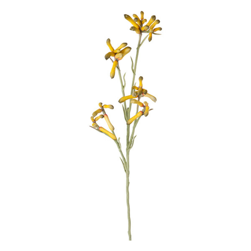Mr Plant-collectie Artificial kangaroo paw twig yellow 65 cm