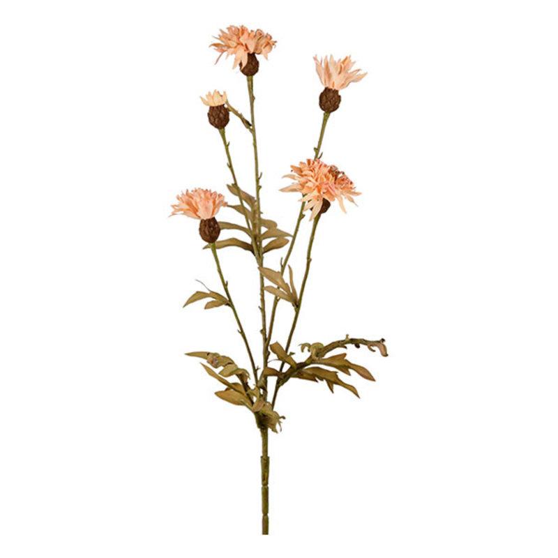 Mr Plant-collectie Kunstbloem Korenbloem beige 60 cm