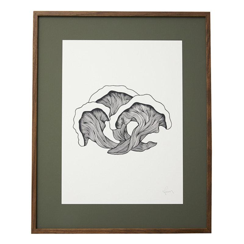 Nordal-collectie FUNGI illustration, dark oak frame