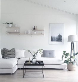 simply pure BASIC Interieur advies ( Max. 2 uur)