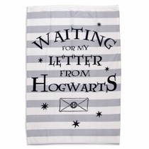 Warner Bros Harry Potter Handdoek Griffindor
