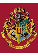 Harry Potter Rug