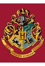 Warner Bros Harry Potter Vloerkleed Hogwards