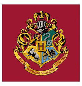 Warner Bros Harry Potter Rug Hogwards