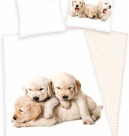 Hond Duvet Puppy