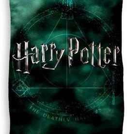 Warner Bros Harry Potter Badlaken