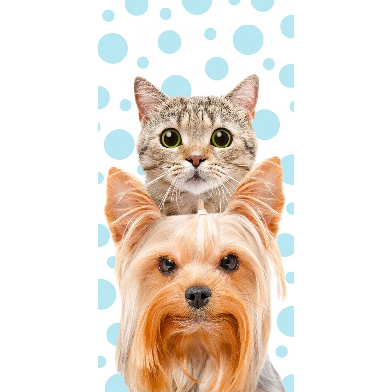CharactersMania Cat & Dog Bath Towel