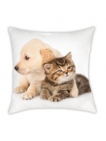 Animal Pictures Puppy & Poesje Kussen