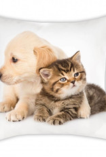 Animal Pictures Puppy & Kitten Cushion