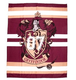 Warner Bros Harry Potter Fleece blanket Muggles