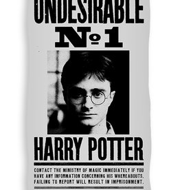 Warner Bros Harry Potter Handdoek Badlaken