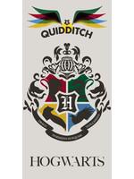 Warner Bros Harry Potter Handdoek Alumni