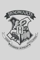 Warner Bros Harry Potter Handdoek Logo