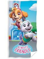 Nickelodeon Paw Patrol  Paw Patrol  Hand Towel team